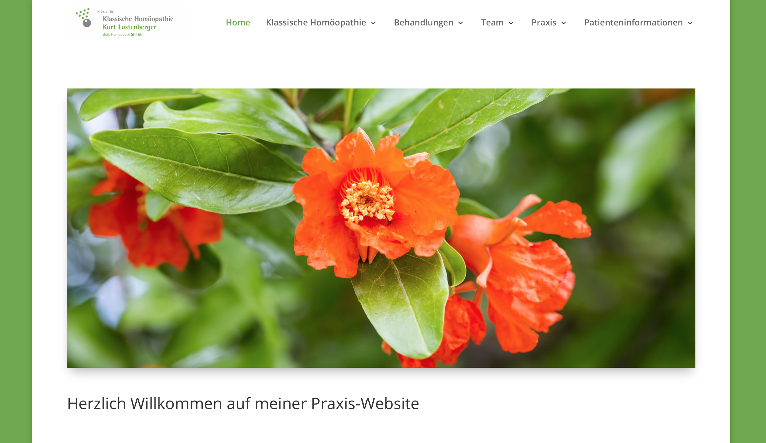 Klassische Homöopathie Luzern